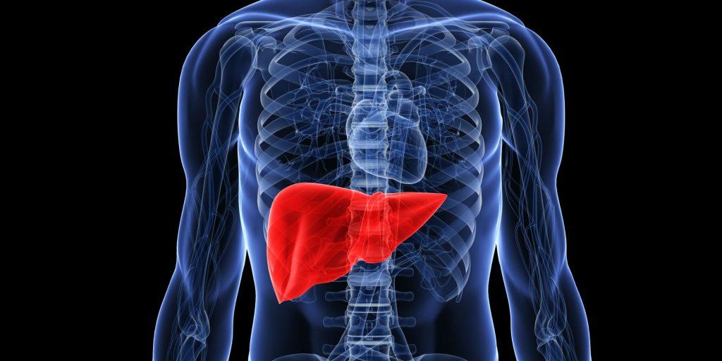 hepatit b tanimi