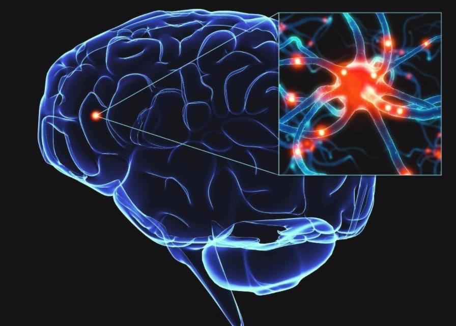 epilepsi sebepleri